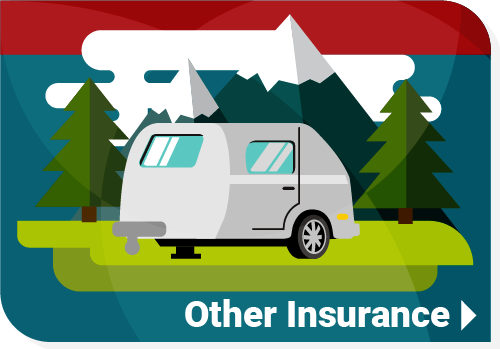 Other Insurance Options